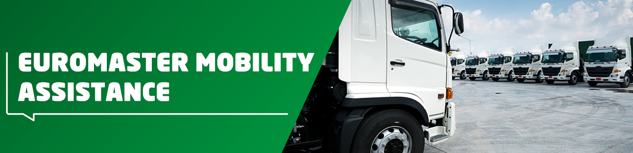 Euromaster mobility assistance